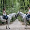 King-horse Конный клуб  - фото (9128-53362)