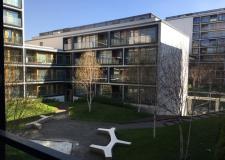 отличные апартаменты отзывчивый персонал все чистое новенькое класс  - фото (435-16996)