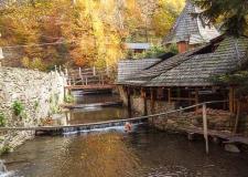 Свежий воздух, вокруг горы и журчание протекающей рядом реки. Тишина и спокойствие. В комплексе - фото (506-27445)