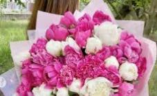 Аленький цветочек - фото (8125-51259)
