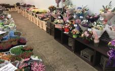 покупал здесь! цветы большой выбор, свежие бутоны, цена обычная не сказал бы что опт  - фото (546-27550)