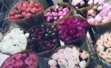 Чайная Роза - фото (8120-51240)