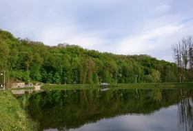 Один из красивейших ландшафтных парков страны! Можно спокойно прогуляться наслаждаясь окружающей - фото (595-40871)