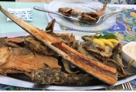 Рыба  - фото (3243-16891)