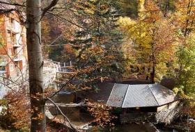 Свежий воздух, вокруг горы и журчание протекающей рядом реки. Тишина и спокойствие. В комплексе - фото (506-27448)
