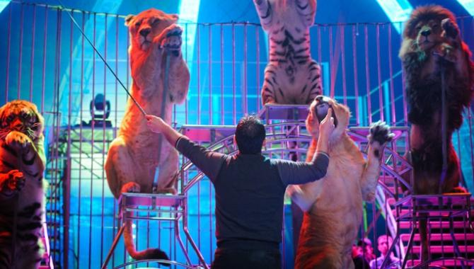 Цирк «Кобзов» - фото (896-4056)