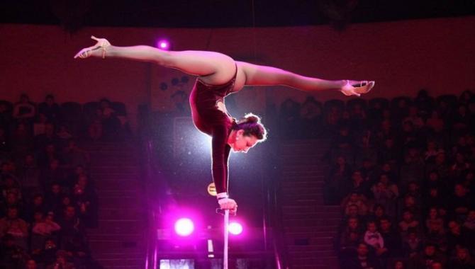 Дніпропетровський державний цирк - фото (897-4065)