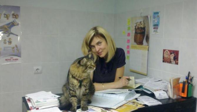 """Ветеринарная клиника """"ПОЛИВЕТ"""" - фото (700-2831)"""
