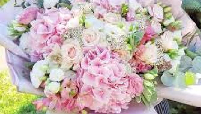 Аленький цветочек - фото (8125-51257)