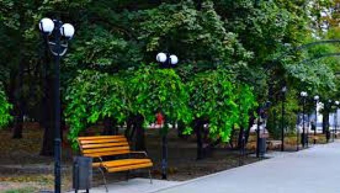 Парк имени Максима Горького - фото (8243-51602)