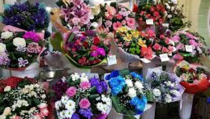 Аленький цветочек - фото (8125-51260)