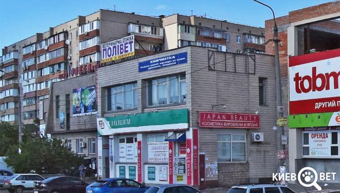 """Ветеринарная клиника """"ПОЛИВЕТ"""" - фото (700-2834)"""