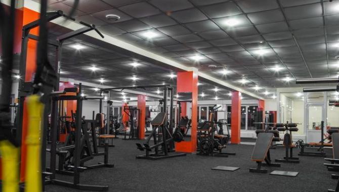Pulse gym - фото (576-2005)