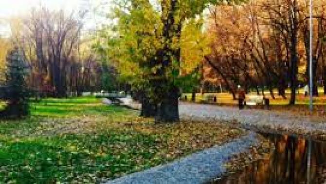 Саржин Яр - фото (8225-51543)