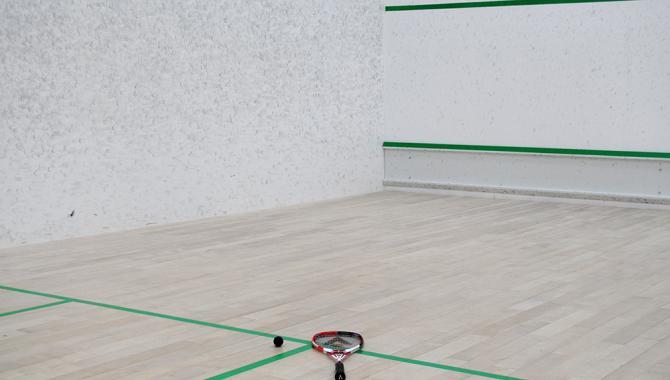 Squash - фото (605-2158)