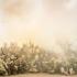 Пейнтбольно-страйкбольный клуб в Днепре, тактическая игра KAVA - фото (9221-53542)